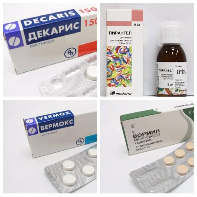 Лекарство от остриц для детей – препараты и таблетки против энтеробиоза