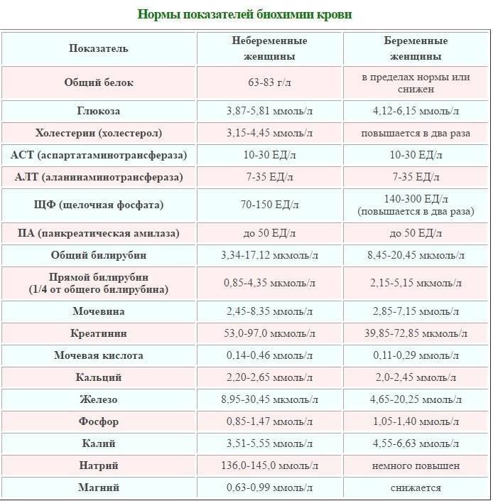 Общий анализ мочи при беременности: расшифровка в таблице