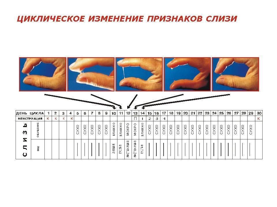 Выделения у девочек: желто-зеленые, кровянистые, слизистые, белые, гнойные выделения из влагалища у новорожденных девочек и подростков / mama66.ru