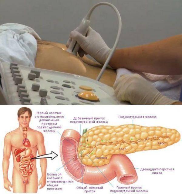 Реактивные изменения поджелудочной железы у ребенка - что это такое: причины, диффузные размеры по узи в норме