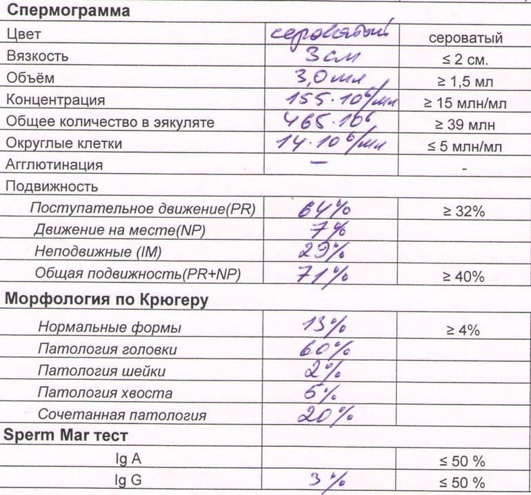 Препараты, витамины и питание для улучшения спермограммы у мужчин