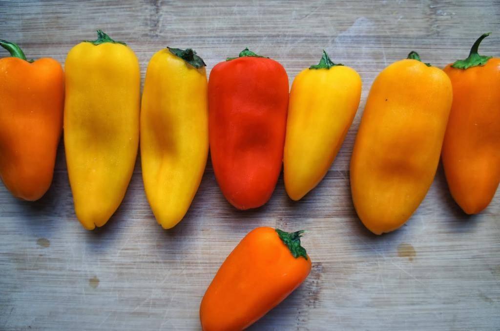Супы для детей: с какого возраста давать, рецепты для ребенка 1 года, 8 месяцев, овощной, с фрикадельками, тыквенный