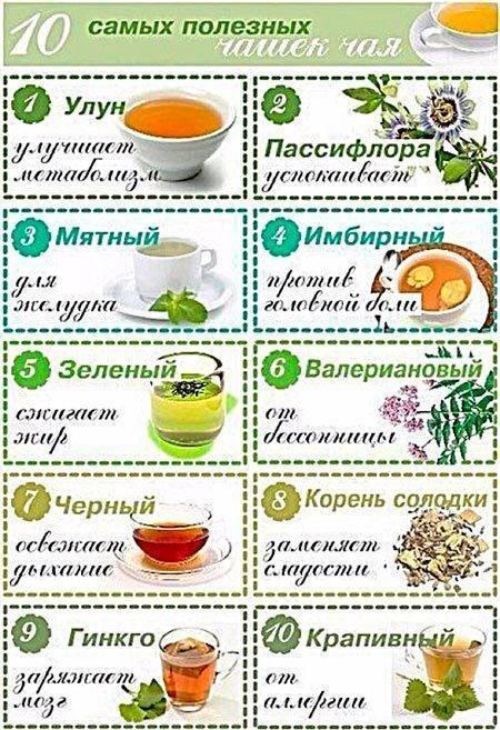 Иван-чай детям: с какого возраста, польза и вред