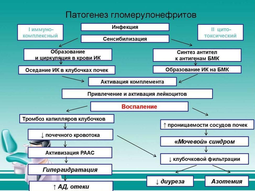 Пиелонефрит у детей: лечение, причины, симптомы, признаки