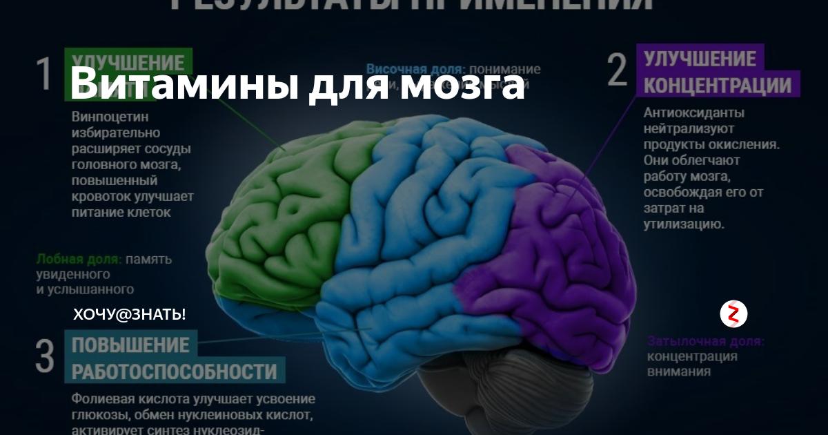 Витамины для детей: для памяти и улучшения работы мозга