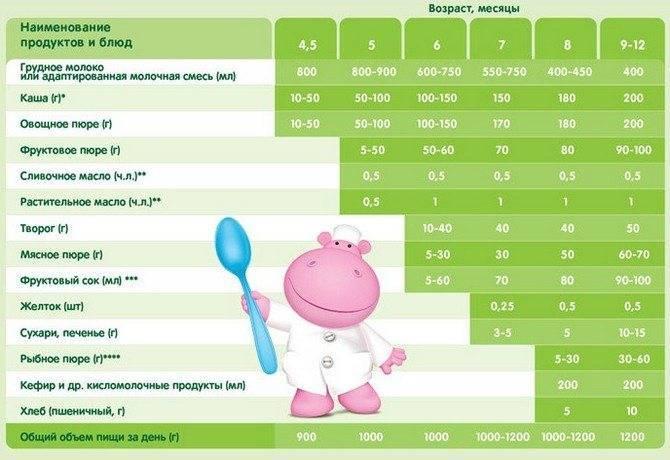 Прикорм в 5 месяцев: меню, чем можно кормить ребенка, схема прикорма по дням, как правильно прикармливать
