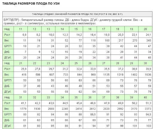 Вдм при беременности по неделям. таблица, что это такое, расшифровка, норма