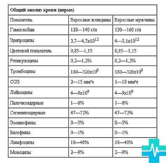 Что такое цветовой показатель в анализе крови у грудничка