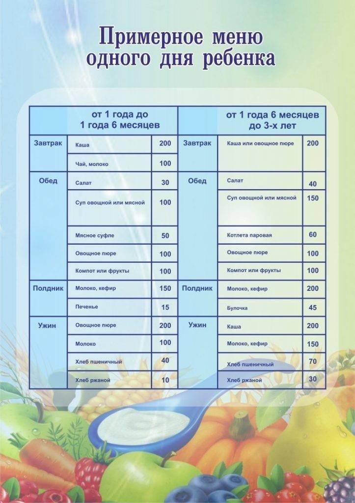 Расширяем рацион. питание детей от 1 года до 1,5 лет. меню и режим питания ребенка после 1 года