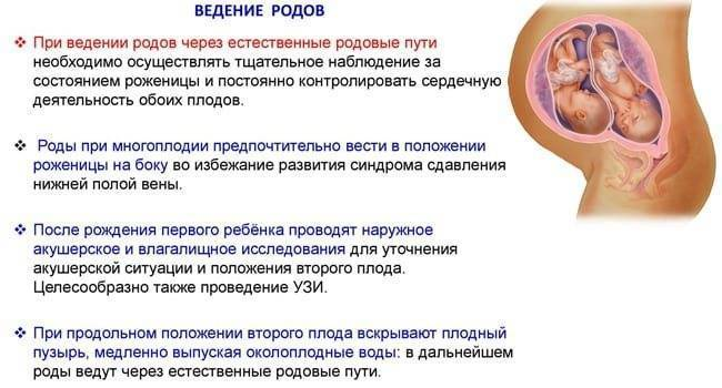 Редукция эмбрионов в клиническом госпитале на яузе