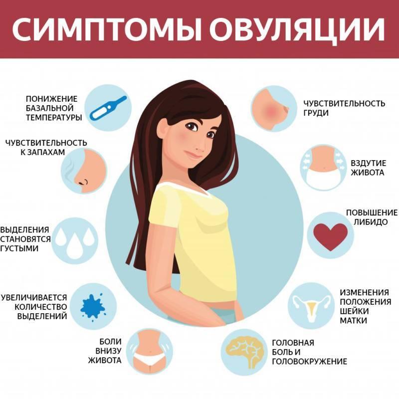 Признаки произошедшей овуляции и ощущения женщины, симптомы до и после ее наступления