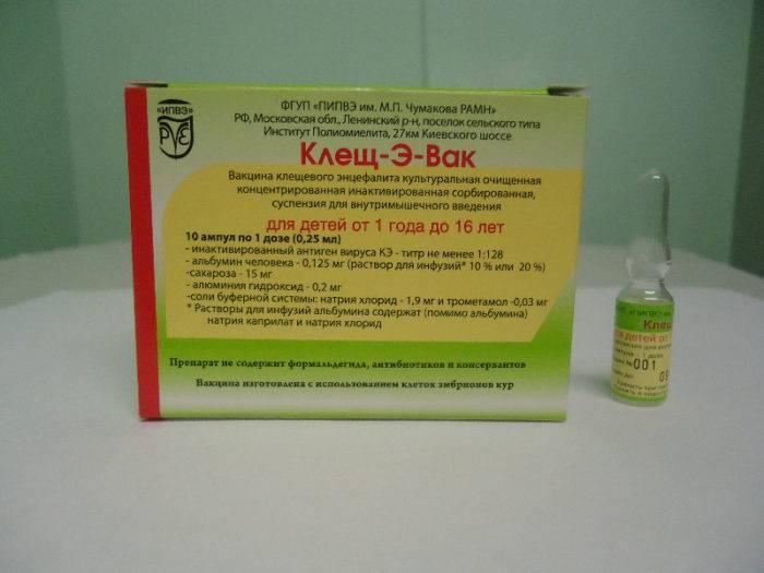 Прививка от клещевого энцефалита детям: опасно ли ставить