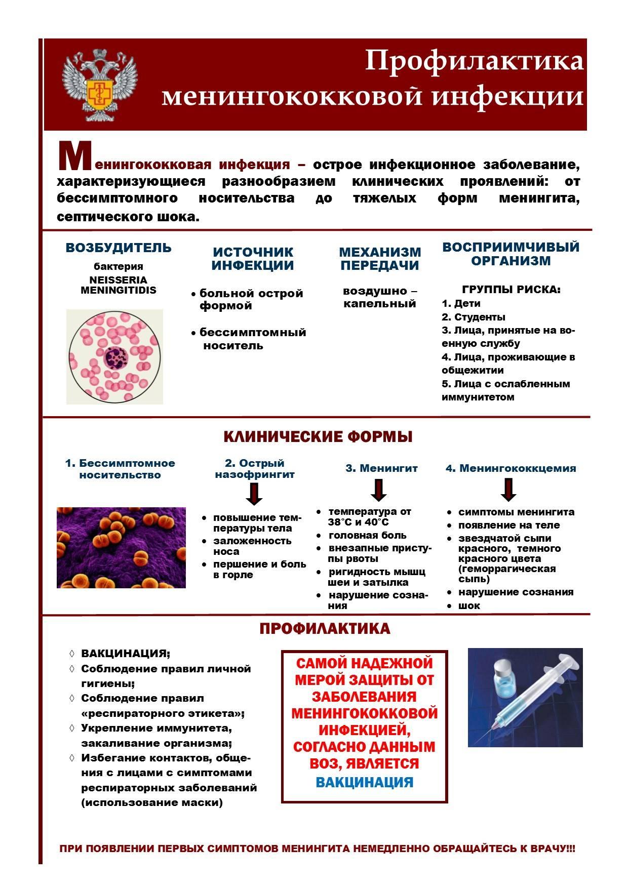 Менингококковая инфекция у детей: симптомы, профилактика, лечение, фото сыпи