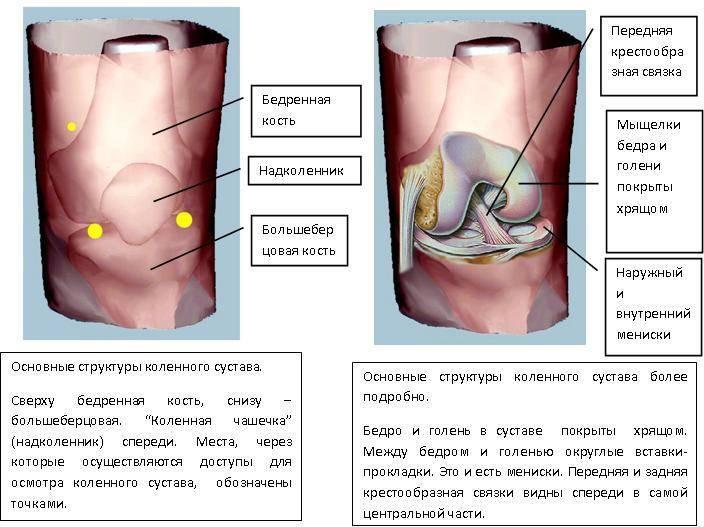 Боли в коленях у детей и подростков: причины, быстрая диагностика, что делать, ребенок жалуется на колено.