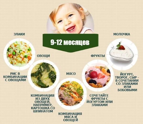 Меню ребенка в 9 месяцев на каждый день недели с рецептами — топотушки
