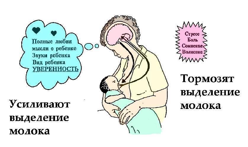 Грудное вскармливание после кесарева сечения: как наладить лактацию, как кормить ребенка, что делать, если не берет грудь