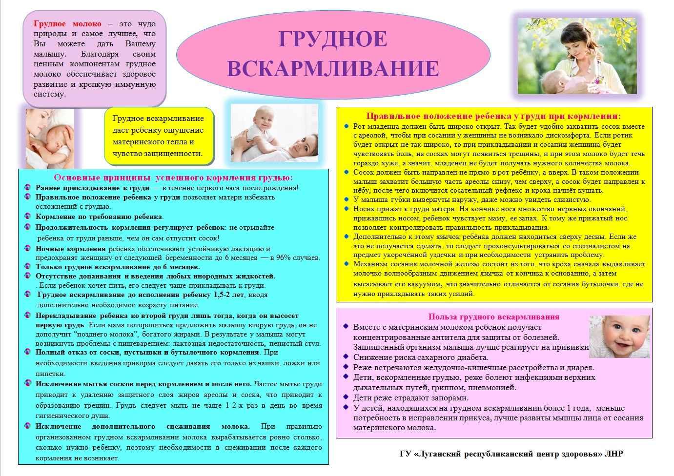 Как организовать грудное вскармливание: рекомендации консультантов и советы кормящих мам - врач 24/7