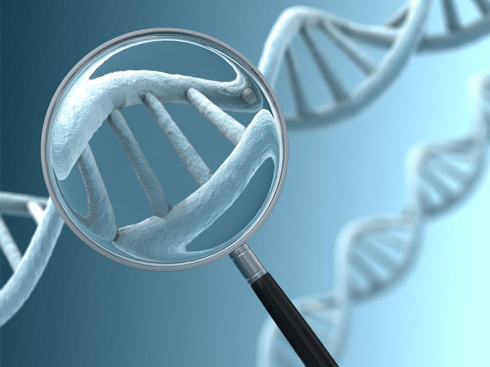 Предимплантационная генетическая диагностика