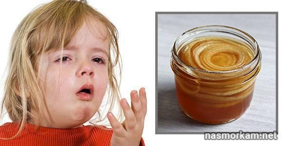Как использовать лук с медом от кашля для детей (рецепты и способы лечения)