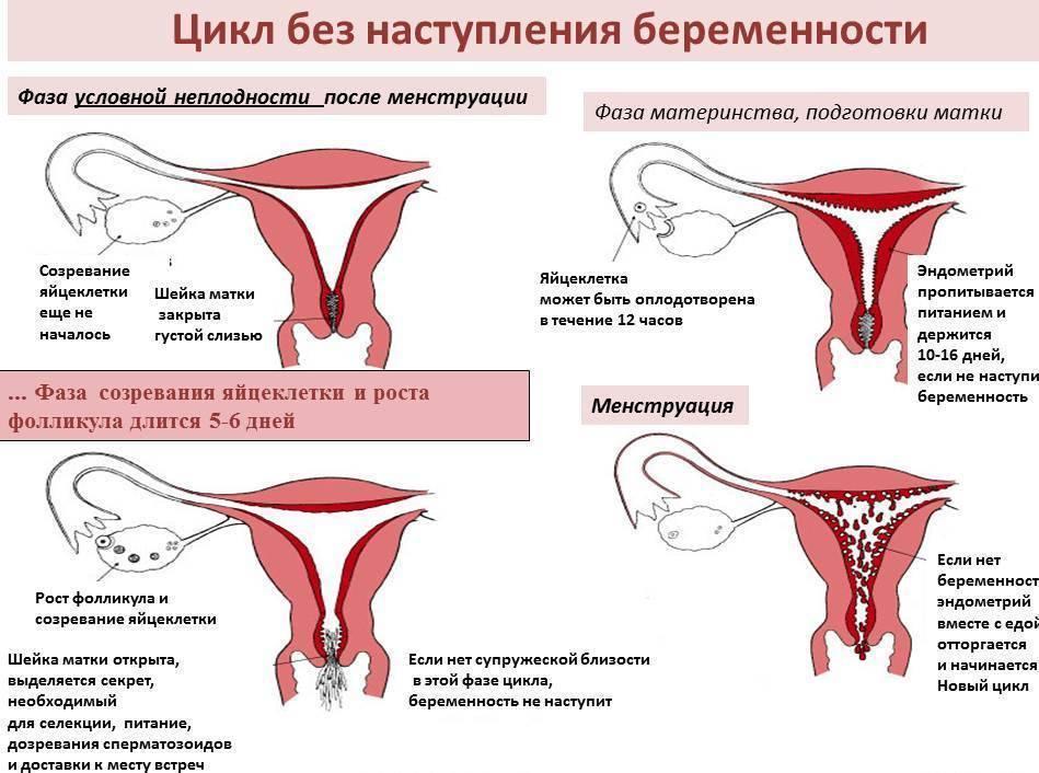 Очень слабые месячные: причины, симптомы, что делать, когда мало менструальной крови, какие заболевания, нужно ли к врачу?