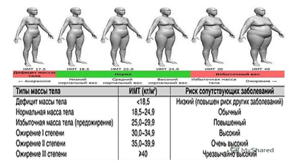 Ожирение у детей и подростков - приемы для выздоровления от «мамаскул»