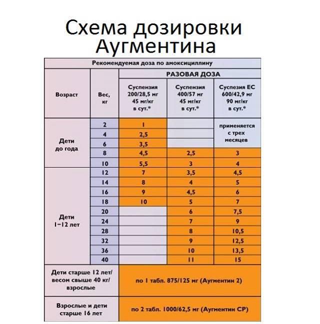 Амоксициллин для детей: инструкция по применению суспензии (125 и 250 мг), сиропа и таблеток - я здоров