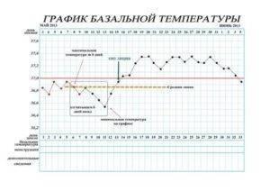 Норма ректальной температуры во время беременности на ранних и поздних сроках, причины отклонения
