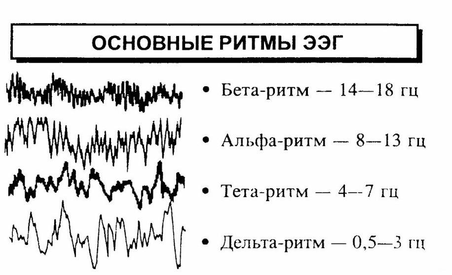 Ээг (электроэнцефалограмма) головного мозга ребенку
