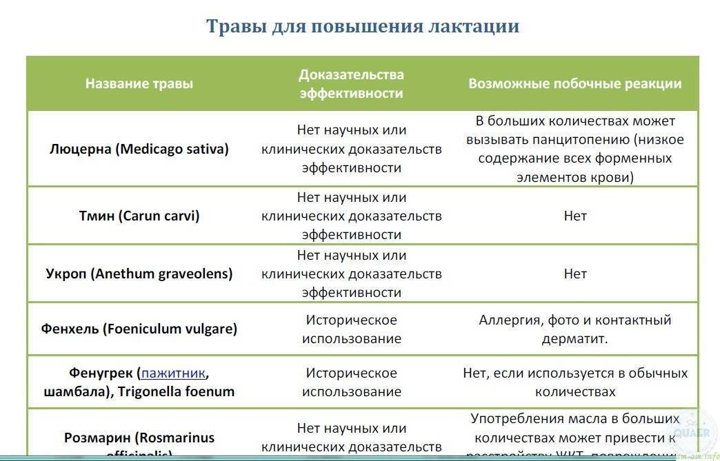 Продукты, увеличивающие лактацию, список продуктов и напитков для лактации