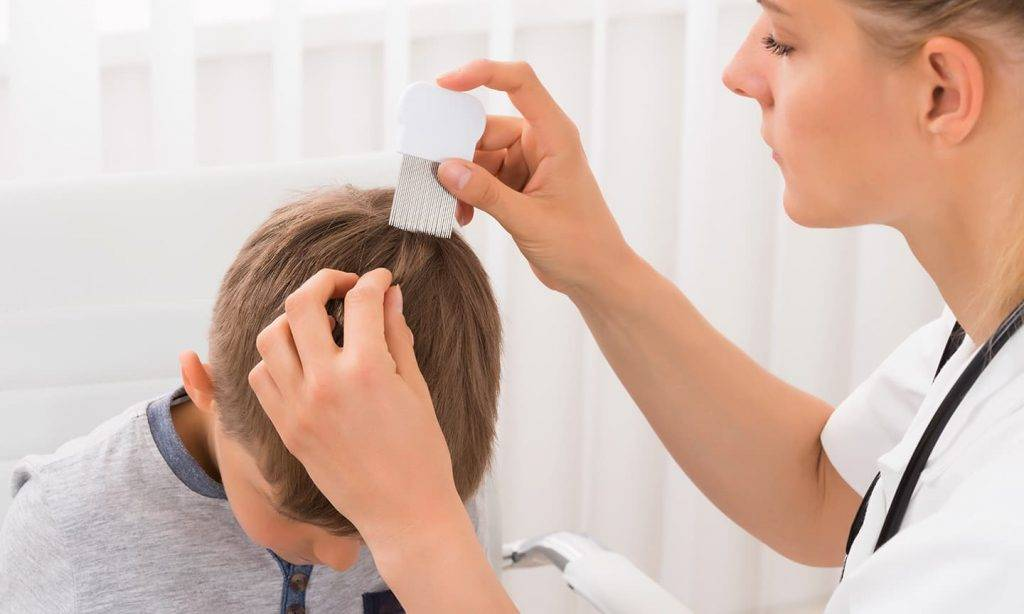 От чего может чесаться голова когда нет вшей и перхоти: причины и лечение