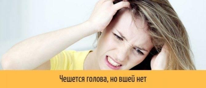 От чего чешется голова у ребенка если вшей нет