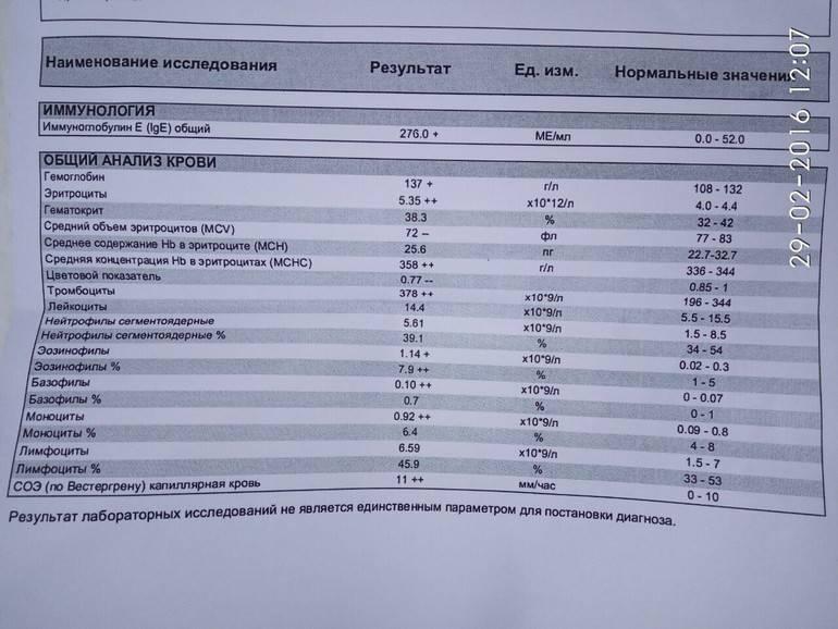 Иммуноглобулин е: норма у детей, повышенные и низкие показатели в общем анализе крови (таблица) | диагностика | vpolozhenii.com