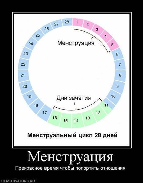 Сколько дней должно быть между месячными?