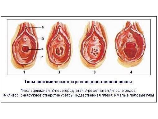 Возможна ли беременность от пальца руки