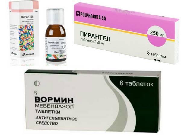 Препараты для профилактики глистов у детей: таблетки и суспензии, народные средства