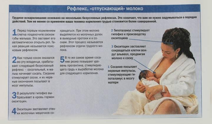 Варианты замены грудного молока при отлучении ребёнка после года