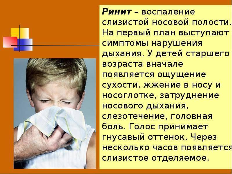 Ринит (насморк). виды ринита, причины, симптомы, диагностика и эффективное лечение.