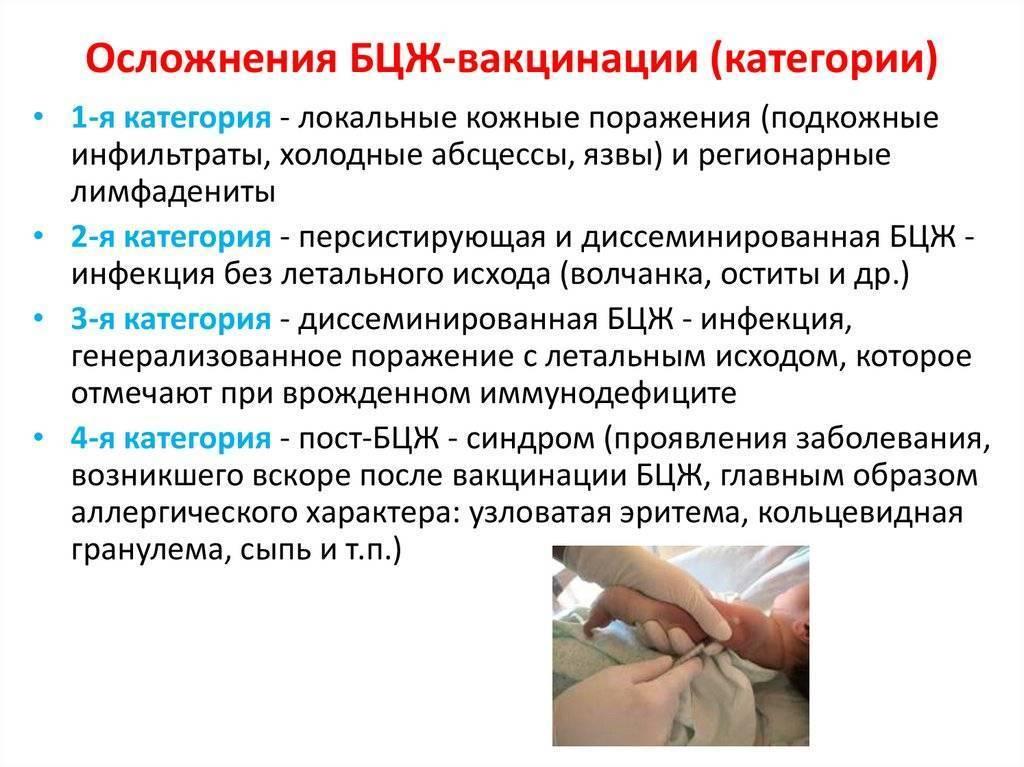 Прививка бцж - как заживает и должна выглядеть