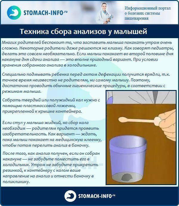Что такое копрограмма или копрология кала у детей – как правильно сдавать, собирать и хранить кал для анализа — топотушки