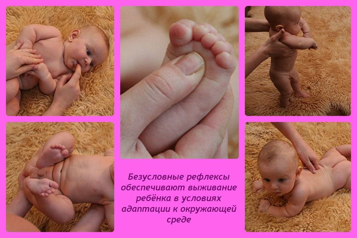 Развитие ребенка с первых дней жизни: что должны знать родители
