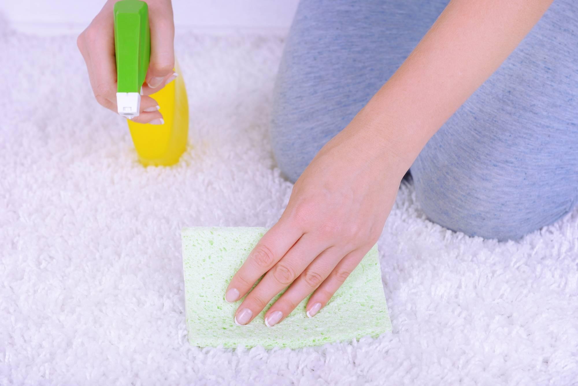 Как убрать запах мочи с ковра: обзор эффективных средств и методов