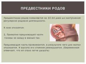 Предвестники родов: когда нужно срочно обращаться к врачу