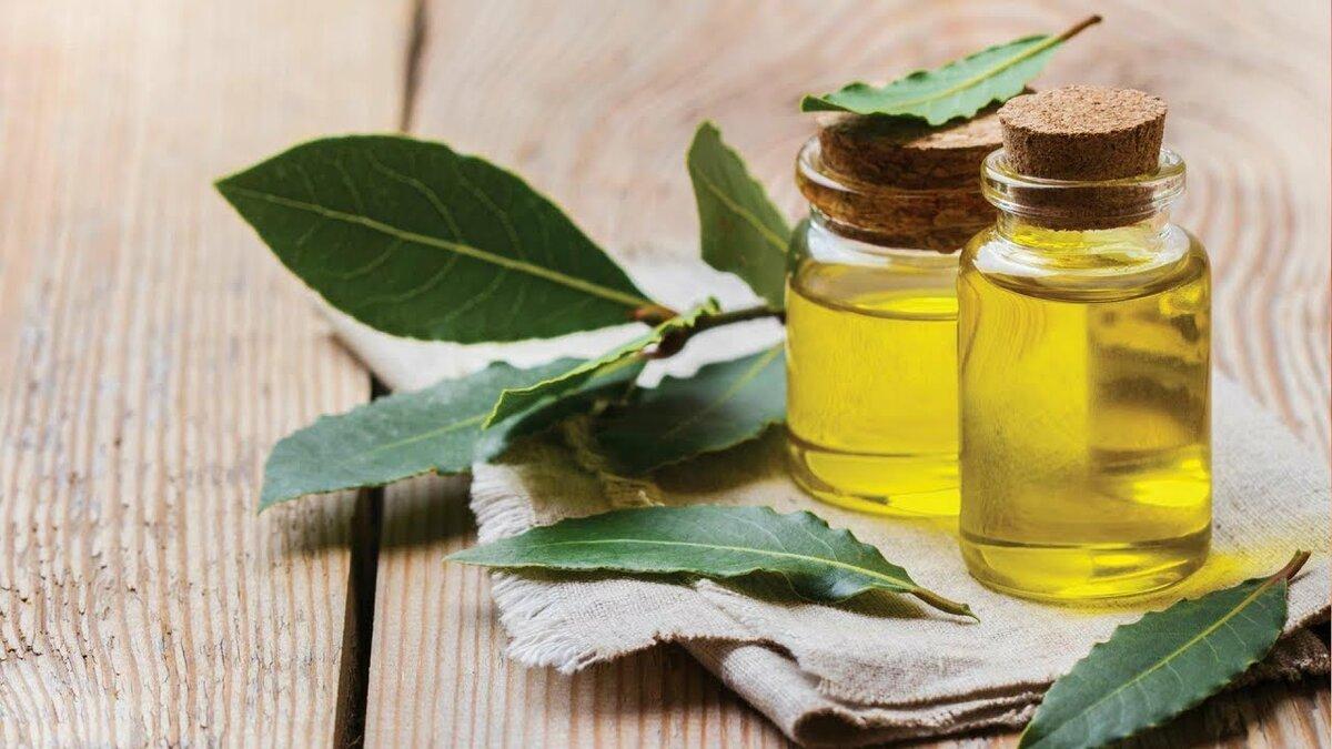 Лечение аллергии лавровым листом - народные средства