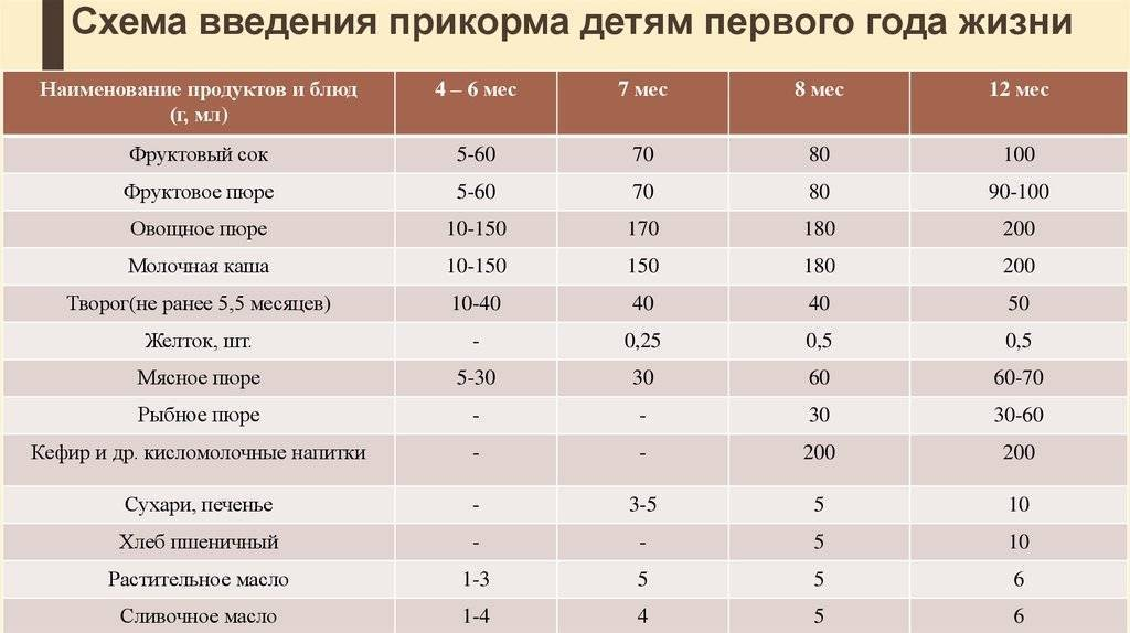 Педагогический прикорм при грудном вскармливании и не только: правила, особенности, отзывы