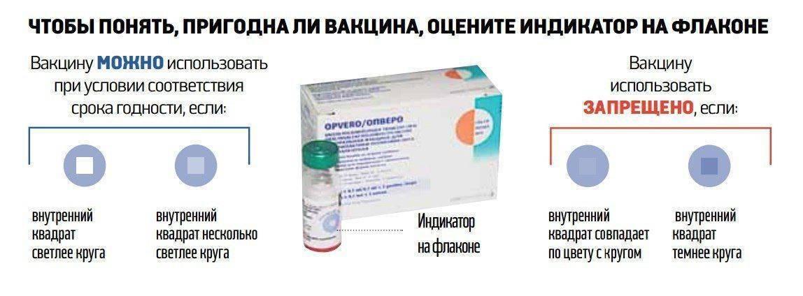 Все о прививке адсм: состав вакцины, график вакцинации, противопоказания