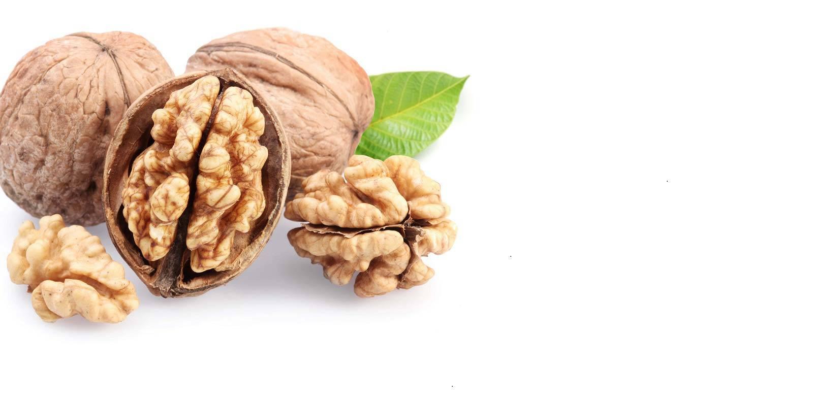 Можно ли есть беременным орех макадамия: польза и вред для женщин во время разных триместров, суточная дозировка, а также полезные свойства шелухи данного продукта