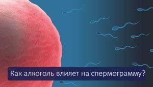 Как влияет алкоголь (пиво) на качество спермы