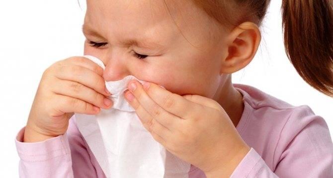 Ребенок шмыгает носом а соплей нет — детишки и их проблемы
