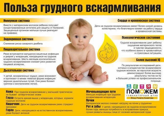 Сгущенка при грудном вскармливании: можно ли кормящей маме
