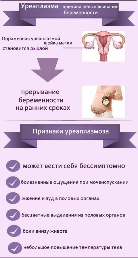 Понос как признак беременности | уроки для мам